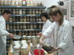 Herbal Dispensing Practice