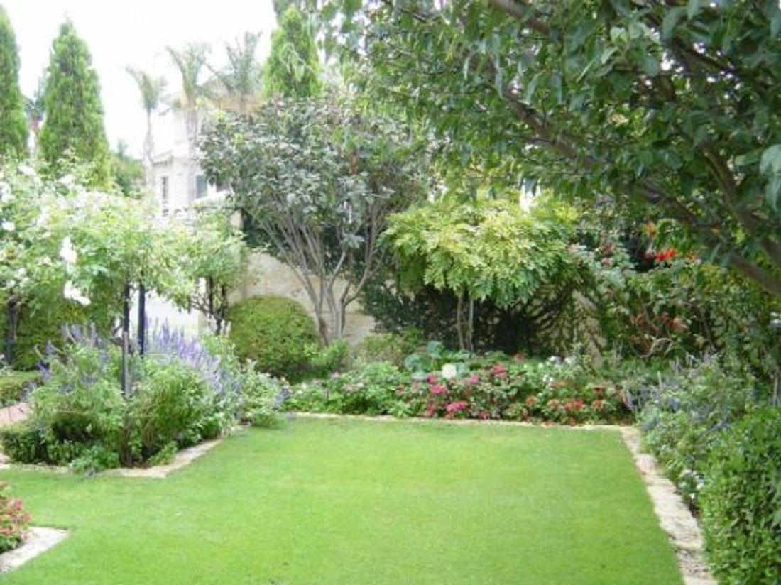 5 spring garden ideas for 2015 hipages com au