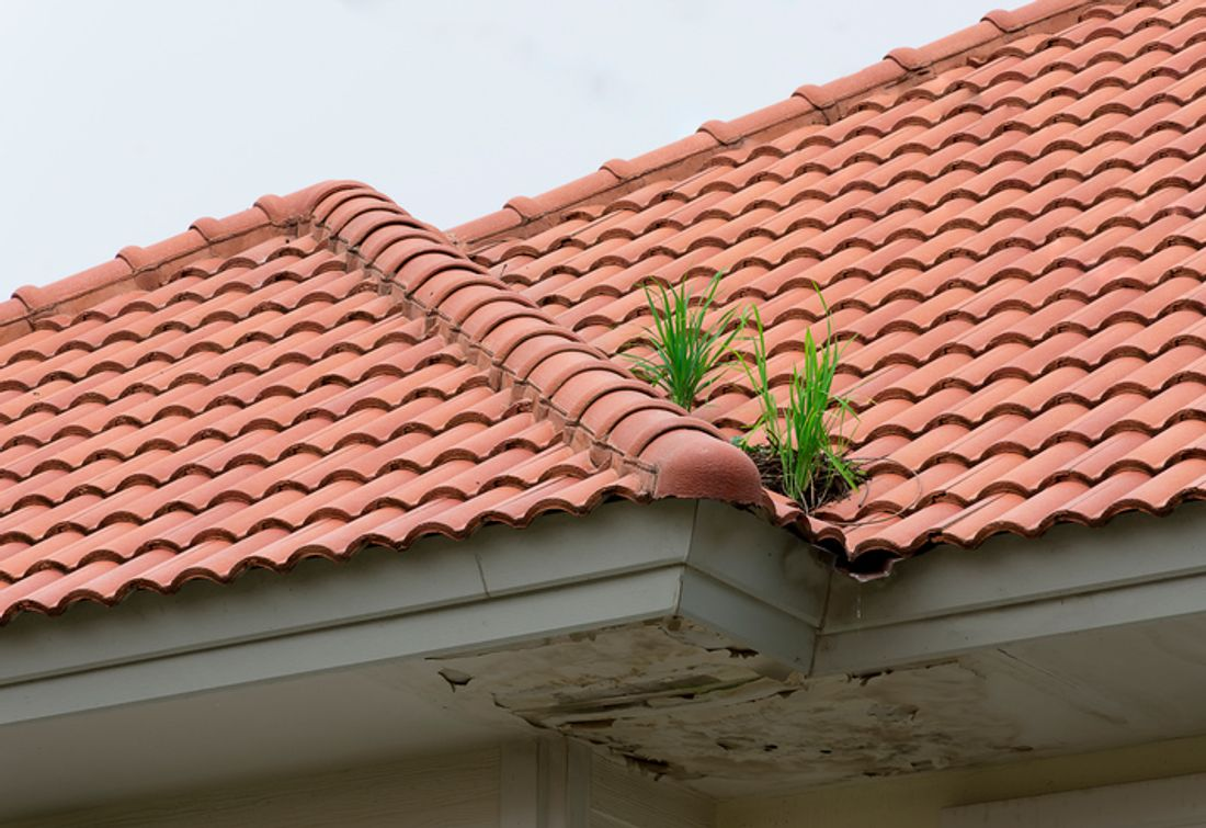 2018 How Much Does Roof Restoration Cost Hipages Com Au