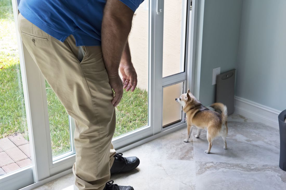 The Solution Is A Doggy Door. How Much Does It Cost To Install A Doggy Door?  Hereu0027s What You Need To Know.