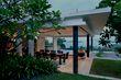 Frangipani garden ideas