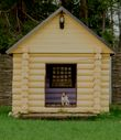 build a doghouse