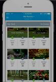 screen shot of Rachio app