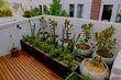 Gardens for balconies