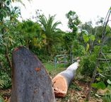 Killen Earthscaping - Goomboorian QLD 4570 - hipages com au