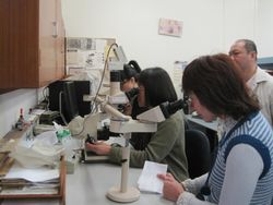 Lab practice for Human Medical Science