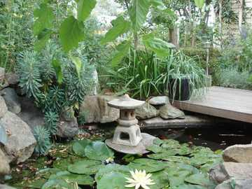 cost guide to building your own garden pond hipages com au