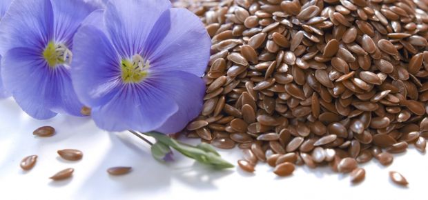 What is Linseed/Flaxseed?