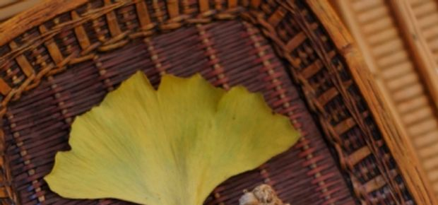 Health Benefits Of Korean Ginseng in 2018
